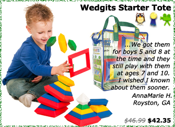 Wedgits Starter Tote